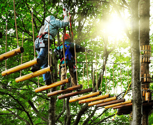Kanzleiausflug Kletterpark
